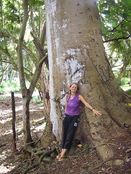 Do Yoga - Großer Baum und Dorothea