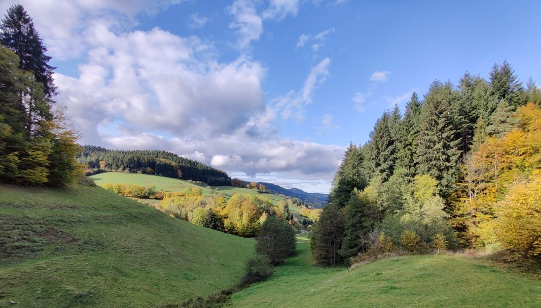 Prinzbachtal